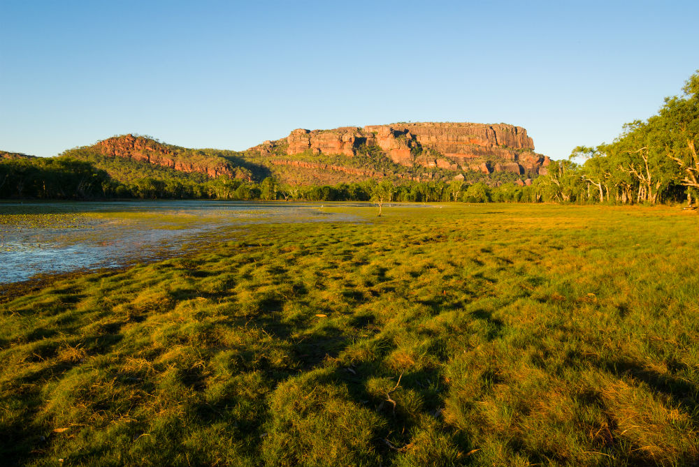 Drones Protect Kakadu National Park From Weeds